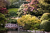 JAPANESE GARDEN IN BROOKLYN BOTANIC GARDEN, NEW YORK