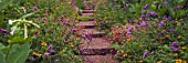 STEPS AT THE DOROTHY CLIVE GARDEN WILLOUGHBY SHROPSHIRE