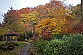WINTERBOURNE BOTANICAL GARDEN, UNIVERSITY OF BIRMINGHAM, NOVEMBER