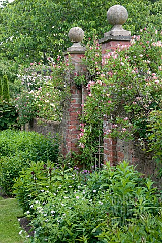WOLLERTON_OLD_HALL_GARDEN_JUNE