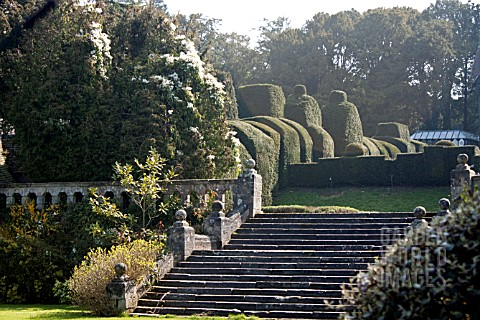 FRONT_GARDENS_WITH_TOPIARY_BLOSSOM_TRAIL_WORCESTERSHIRE