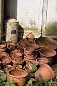 TERRACOTTA POTS IN THE SECRET GARDEN,  THE MANOR,  HEMINGFORD GREY,  APRIL