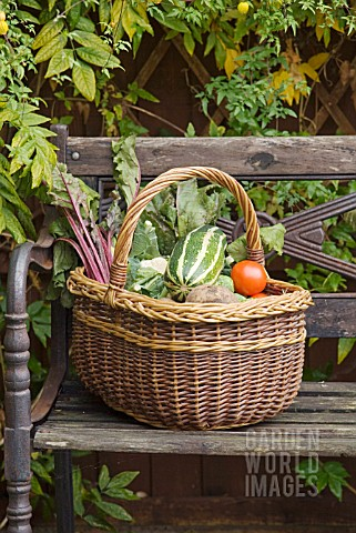 WICKER_BASKET_OF_VEGETABLES_CONTAINING_MARROW_TOMATOES_CAULIFLOWER_BEETROOT_AND_POTATOES
