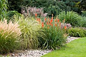 KNIPHOFIA MOUNT ETNA IN GRASS BORDER RHS WISLEY