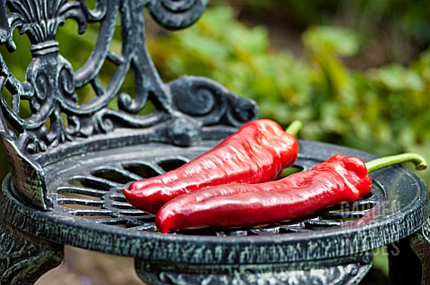 RAMIRO_SWEET_POINTED_RED_PEPPERS
