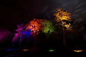 RHS WISLEY GARDEN TREES LIT UP IN THE LIGHT TRAIL EVENT