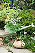 WATERING CAN PLANTED WITH FLOWERS. OWNERS,  MR & MRS CLARK