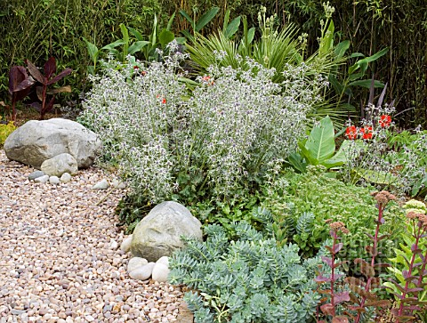 THE_SCREE_GARDEN__DURRANCE_MANOR__SUSSEX