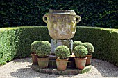 FORMAL BOX( BUXUS),  CONTAINERS AND GARDEN URN,  EAST RUSTON OLD VICARAGE,  NORFOLK.
