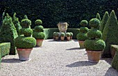 BOX TOPIARY IN FORMAL DESIGN AND GARDEN URN,  EAST RUSTON OLD VICARAGE,  NORFOLK.