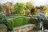 BUXUS BENCH SEAT AT MITCHMERE FARM, SUSSEX