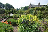 THE KITCHEN GARDEN AT THE HOUSE OF PITMUIES GARDEN, SCOTLAND. (Editorial use only)