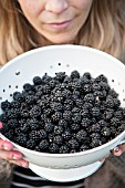 LADY HOLDING BOWL OF BLACKBERRIES
