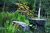 CAROLINES GARDEN AT CRATHES,  SCOTLAND.AN INFORMAL WOODLAND GARDEN WITH A MIXTURE OF NATIVE AND NON NATIVE TREES AND SHRUBS,  WITH GRANITE TABLE AND BENCH IN FOREGROUND.