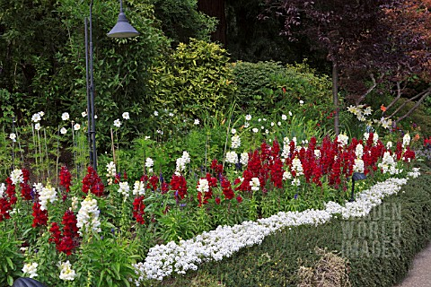 HERBACEOUS_BORDER_BUTCHART_GARDENS