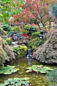 BUTCHART GARDENS, THE JAPANESE GARDEN IN AUTUMN