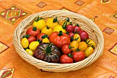 BOWL OF TOMATOES (ALL NAMED)