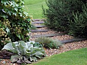 MIXED PLANTING WITH RAILWAY SLEEPERS AT DENMANS GARDEN