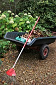 WHEELBARROW,  AUTUMN CLEARANCE AT DENMANS GARDEN