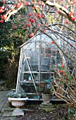 GREENHOUSE IN WINTER