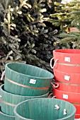 CONTAINERS FOR CHRISTMAS TREES