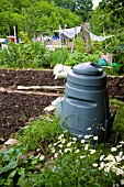 ORGANIC WASTE COMPOST BIN IN LONDON ALLOTMENT