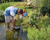 http://www.gardenworldimages.com/ImageThumbs/MSG159/1/MSG159_PLANTING_UP_POND_WIH_PLANTS_WATER_GARDEN_MAINTENANCE_WORK.jpg
