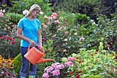 WOMAN WATERING FLOWERS IN GARDEN BED WITH WATERING CAN