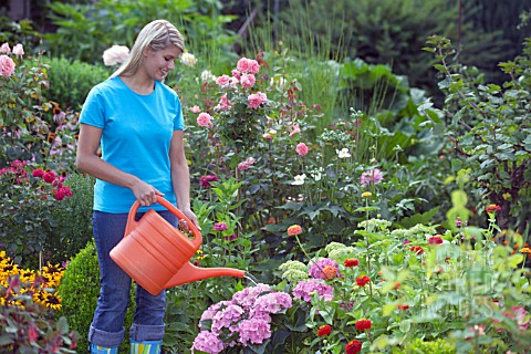 WOMAN_WATERING_FLOWERS_IN_GARDEN_BED_WITH_WATERING_CAN