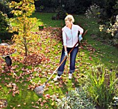 JOBS FOR AUTUMN - RAKING LEAVES
