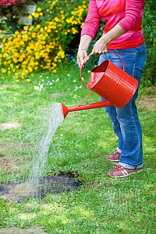 LAWN_CARE__WATERING
