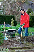 DIGGING OVER THE VEGETABLE BEDS IN WINTER