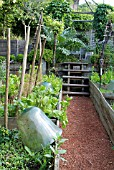 MINI-VEGETABLE GARDEN. CLOCHE. GARDEN OF PIERRE-ALEXANDRE RISSER. GARDEN DESIGNER.