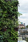 GREEN WALL, WALL VEGETATION. ACTION, PROJECT  PERSPECTIVES. GARDEN DESIGNER M. JEAN-LOUIS POSSÈME