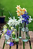 SPRING FLOWERS IN GLASS CONTAINERS