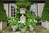 ORNATE STONE URNS, WHITE THEMED COLOUR OF PELAGONIUMS AT WOLLERTON OLD HALL