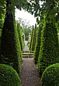 TALL YEW SPIRES IN THE WELL GARDEN AT WOLLERTON OLD HALL