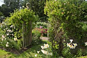 FRONT GARDEN WITH GATES WITH FRAGRANT CLIMBING LONICERA AND LILLIUM REGAL AT WOLLERTON OLD HALL