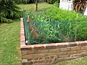 SMALL VEGETABLE GARDEN IN BRICK RAISED BED