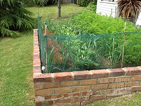 RSA2552- SMALL VEGETABLE GARDEN IN BRICK RAISED BED : Asset ...