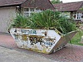 PLANTS IN A SKIP,  FOUNTAIN GRASS ,  PENNISETUM SETACEUM.