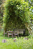 WILLOW ARBOUR AT THE MANOR HEMMINGFORD GREY