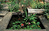 SMALL POND WITH RAILWAY SLEEPERS AND NYMPHAEA