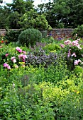 WALLED KITCHEN GARDEN IN EARLY SUMMER