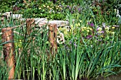 CLOSE UP OF MARGINAL POND BORDER IN SUMMER WITH WOODEN POSTS