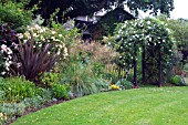 MIXED HERBACEOUS BORDER IN SUMMER WITH ROSA ALBERIC BARBIER ON ARBOUR