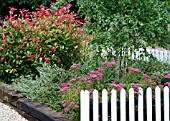 GARDEN WITH PICKET FENCE IN SUMMER