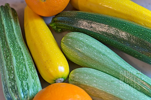 COURGETTES_AND_ORANGES