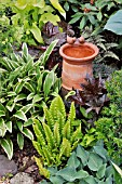 HOSTA, ASPLENIUM SCOLOPENDRIUM,HEUCHERA WITH BIRD BATH. DESIGN: MARIANNE AND DETLEF LUEDKE