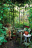 IRON ARBOUR AT OVING,  SUSSEX,  BARRY TARGETT (FEATURE AVAILABLE ON REQUEST)